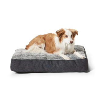 Shapes Oblong Dog Bed
