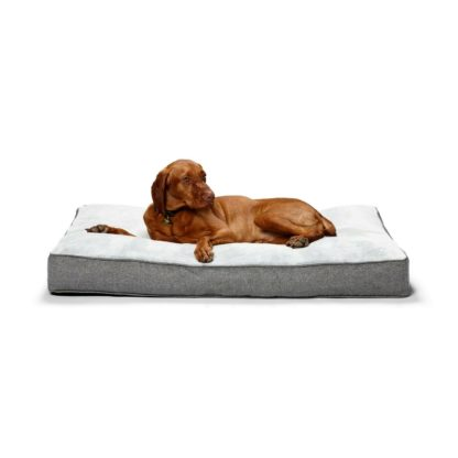 oblong oslo dog bed