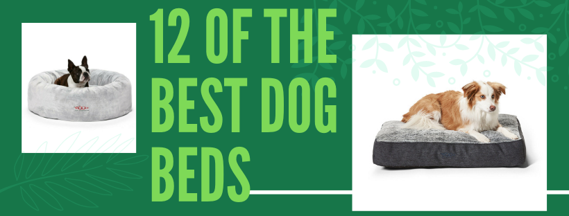 the best dog beds 2019