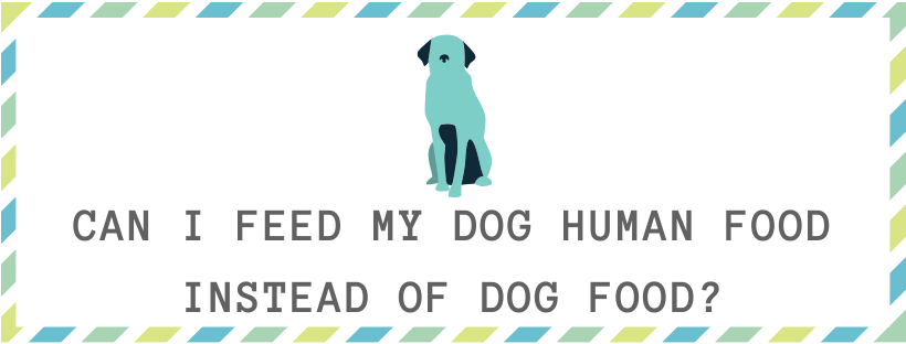 Can i feed my dog human food instead of dog food?