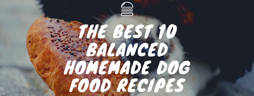 The Best 10 Balanced Homemade Dog Food Recipes Naturalpetshop