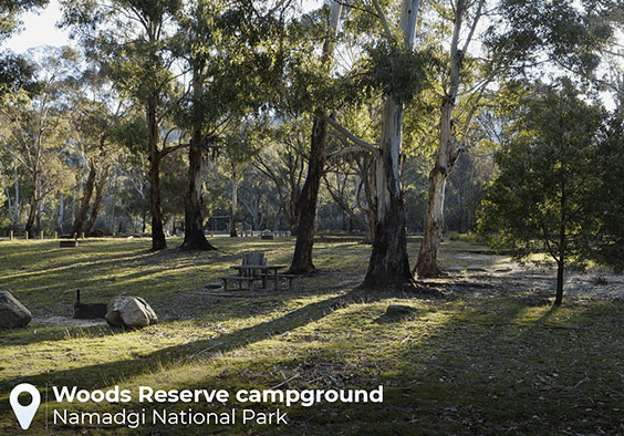 Pet friendly accommodation ACT & Snowy Mountains   Woods reserve