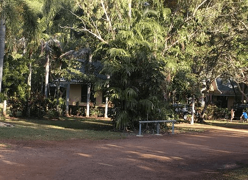 Litchfield Tourist Park | The Best Dog friendly road trips NT - Dog friendly holiday ideas Northern Territory