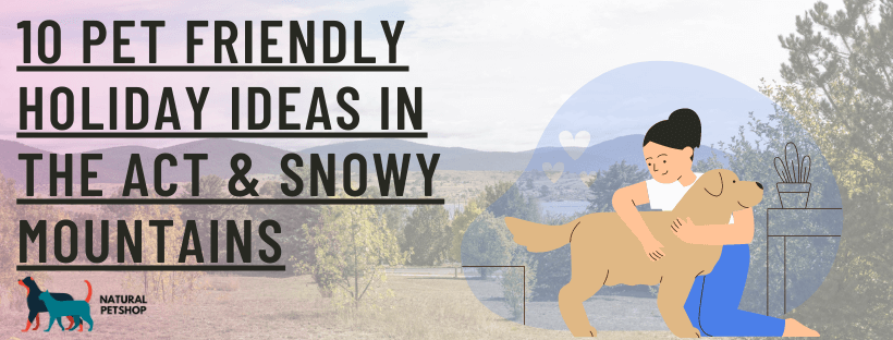 pet friendly accommodation ACT & Snowy Mountains