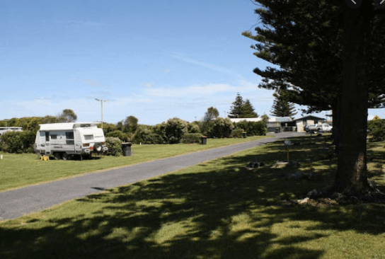 dog friendly camping at Port MacDonnell Foreshore Tourist Park