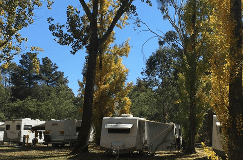 Beechworth Holiday Park – The High Country region - Dog friendly accommodation with pool victoria