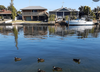 Dolphin View Cottage – South Yunderup (near Mandurah)