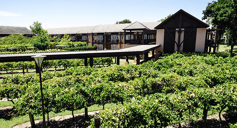 The Vines Resort & Country Club – The Vines (Greater Perth area)