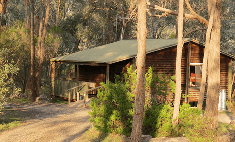 The Woolshed Cabins - pet friendly resorts Beechworth